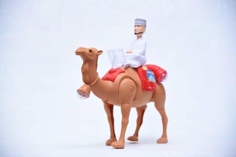 Arabic Desert Camel