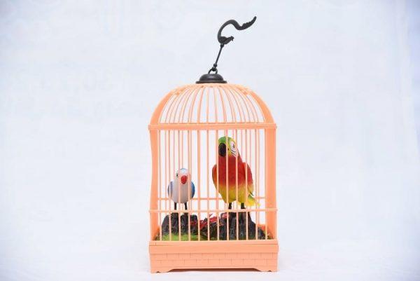 Happy Bird Cage
